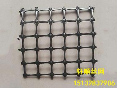 钢塑支护网